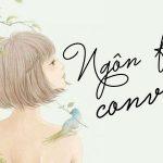 #Đề cử List truyện Convert hay nhất 2019 (đã hoàn thành)